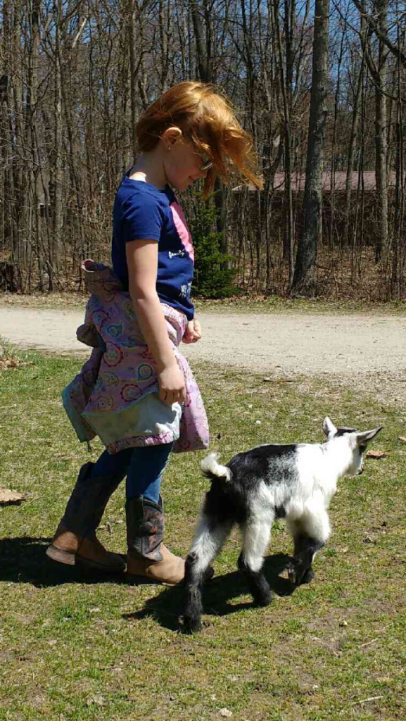 goat, goat girl, walking with a goat